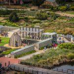 World Environment Day 5 June 2019 at Adelaide Botanic Garden